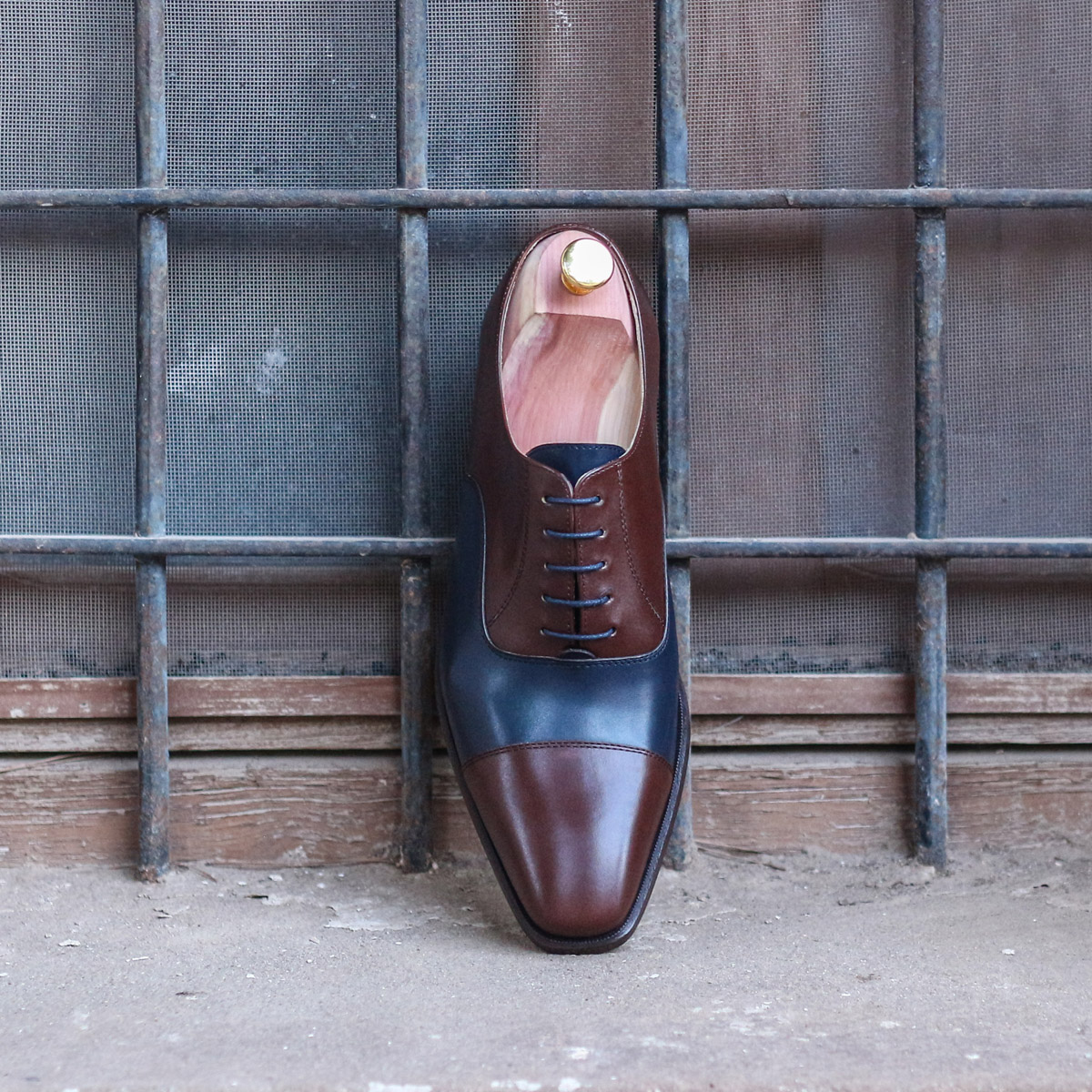 Oxford  dark brown painted calf + navy painted calf : 240€